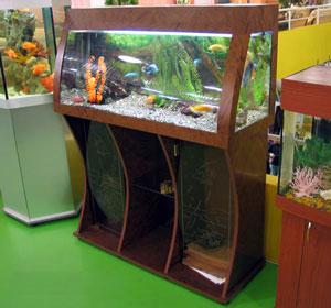 nestandartnye akvariumy